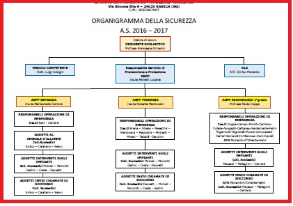 immagine organigramma